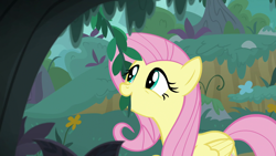 Size: 1920x1080   Tagged: safe, screencap, fluttershy, pegasus, pony, season 8, yakity-sax, cute, eating, female, herbivore, horses doing horse things, mare, shyabetes, solo