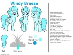 Size: 1024x768 | Tagged: safe, artist:windy breeze, oc, oc:windy breeze, pegasus, pony, butt, cutie mark, looking at you, plot, reference sheet, simple background, solo, tail