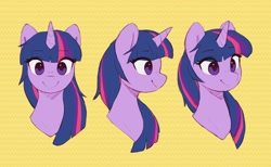 Size: 2728x1684 | Tagged: safe, artist:orchidpony, twilight sparkle, pony, unicorn, bust, different angles, eye clipping through hair, eyebrows, eyebrows visible through hair, female, high res, mare, portrait, practice, simple background, smiling, solo, unicorn twilight