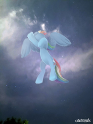 Size: 756x1008 | Tagged: safe, artist:catachromatic, rainbow dash, pegasus, pony, cloud, digital painting, female, flying, mare, night, real life background, signature, sky, sky background, solo, stars, tree, worm's eye view