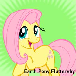 Size: 811x809 | Tagged: safe, fluttershy, earth pony, pony, derpibooru, the return of harmony, earth pony fluttershy, meta, race swap, smiling, spoilered image joke