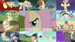 Size: 1280x721   Tagged: safe, edit, edited screencap, editor:quoterific, screencap, apple bloom, applejack, basil, big daddy mccolt, big macintosh, blueberry curls, bracer britches, bubblegum blossom, discord, fluttershy, iron will, pinkie pie, rainbow dash, rarity, scootaloo, snow hope, starlight glimmer, sweetie belle, toe-tapper, torch song, twilight sparkle, valley glamour, alicorn, bird, butterfly, chicken, cockatrice, dragon, duck, earth pony, pegasus, pony, snake, unicorn, buckball season, daring doubt, dragonshy, fake it 'til you make it, filli vanilli, fluttershy leans in, friendship is magic, hurricane fluttershy, keep calm and flutter on, putting your hoof down, scare master, season 1, season 2, season 3, season 4, season 5, season 6, season 7, season 8, season 9, stare master, the last problem, applejack's hat, bat ponified, clothes, costume, cowboy hat, cute, cutie mark crusaders, female, filly, find the music in you, flutterbat costume, fluttershy being fluttershy, fluttershy's cottage, flying, hat, ice skating, journey, male, mane six, mare, mccolt family, night, nightmare night costume, older, older fluttershy, open mouth, open smile, petrification, ponytones, ponytones outfit, raribetes, shyabetes, smiling, spread wings, stallion, stare, the magic of friendship grows, the ponytones, twilight sparkle (alicorn), wings