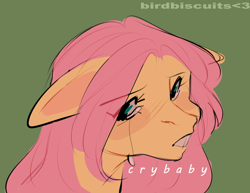 Size: 1000x773 | Tagged: safe, artist:birdbiscuits, fluttershy, pony, crying, solo