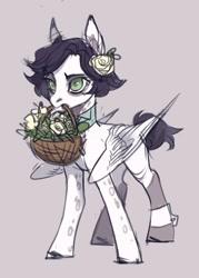 Size: 1158x1615   Tagged: safe, artist:lunnita_pony, oc, oc only, oc:lunnita, pegasus, pony, solo