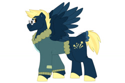 Size: 1280x854 | Tagged: safe, artist:itstechtock, oc, oc:stellar bolt, pegasus, pony, bomber jacket, clothes, jacket, male, offspring, parent:lightning dust, parent:star hunter, simple background, solo, stallion, sunglasses, two toned wings, white background, wings