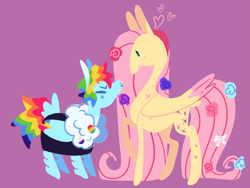 Size: 2213x1662 | Tagged: safe, artist:babypaste, fluttershy, rainbow dash, pegasus, pony, female, flower, flower in hair, flutterdash, height difference, lesbian, lineless, mare, purple background, shipping, simple background, tail feathers, tallershy