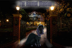 Size: 1024x684 | Tagged: safe, artist:avastindy, pony, clothes, creepy, disneyland, dress, fog, irl, night, photo, ponies in real life, solo, spooky, the haunted mansion, wallpaper