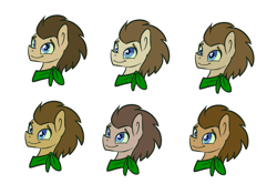 Size: 1039x688   Tagged: safe, artist:toadstool-prancer, doctor whooves, time turner, oc, oc:tantamount, pony, tantamount time turner, disguise, disguised changeling, simple background, solo, white background