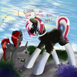 Size: 2048x2048   Tagged: safe, artist:dicemarensfw, oc, oc only, oc:dicemare, oc:mtn dew, earth pony, pegasus, pony, algae, boat dock, clothes, collar, commission, dialogue, dock, female, fishing, freckles, full body, mare, plants, rock, shading, size difference, socks, standing, water, wings