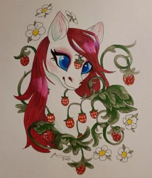 Size: 640x749 | Tagged: safe, artist:creeate97, sugarberry, pony, g1, solo