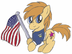 Size: 918x699 | Tagged: safe, artist:pegasski, oc, oc only, earth pony, pony, clothes, earth pony oc, flag, male, simple background, smiling, solo, stallion, united states, white background