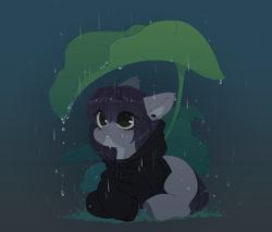 Size: 1401x1191 | Tagged: safe, artist:zilya-lya, oc, oc only, earth pony, pony, clothes, ear fluff, ear piercing, earring, grass, hoodie, jewelry, leaf, lying down, piercing, prone, rain, solo, water, wet