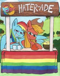 Size: 981x1250 | Tagged: safe, artist:ashleyfableblack, applejack, rainbow dash, earth pony, pegasus, pony, appledash, female, lesbian, shipping