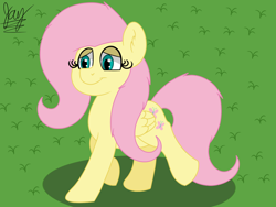 Size: 1600x1200 | Tagged: safe, artist:jay_wackal, fluttershy, pegasus, pony, solo, walking