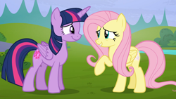 Size: 1920x1080   Tagged: safe, screencap, fluttershy, twilight sparkle, alicorn, pegasus, pony, season 5, the hooffields and mccolts, ^^, cute, duo, duo female, eyes closed, female, grin, mare, raised hoof, shyabetes, smiling, twiabetes, twilight sparkle (alicorn)