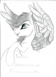 Size: 1275x1752   Tagged: safe, artist:silbernepegasus, oc, pegasus, northice, solo