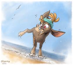 Size: 900x801 | Tagged: safe, artist:annitart, shanty (tfh), bird, goat, seagull, them's fightin' herds, beach, cloven hooves, community related, ocean, raised leg, sand, shantabetes, smiling, splash, splashing
