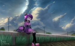 Size: 2560x1600   Tagged: safe, artist:ssnerdy, oc, oc only, anthro, plantigrade anthro, bag, clothes, cloud, female, hoodie, lidded eyes, power line, scenery, shoes, sitting, skirt, solo, stars