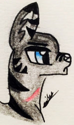 Size: 1093x1832 | Tagged: safe, artist:beamybutt, oc, oc only, pony, wolf, wolf pony, bust, signature, solo, traditional art