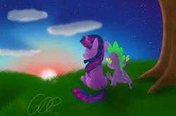 Size: 1280x844 | Tagged: safe, artist:6dpegasus, spike, twilight sparkle, dragon, pony, unicorn, calm, cloud, eyes closed, female, field, relaxed, sitting, stars, sun, sunset, twilight (astronomy), unicorn twilight