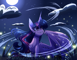 Size: 3800x3000 | Tagged: safe, artist:celes-969, twilight sparkle, alicorn, firefly (insect), insect, pony, chest fluff, cloud, eye clipping through hair, eyebrows, eyebrows visible through hair, fanart, female, full moon, grass, grin, high res, mare, moon, night, smiling, solo, twilight sparkle (alicorn), wind