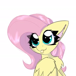 Size: 2362x2362   Tagged: safe, artist:jubyskylines, fluttershy, pegasus, pony, :p, bust, cheek fluff, chest fluff, cute, daaaaaaaaaaaw, ear fluff, female, high res, mare, shyabetes, simple background, solo, tongue out, white background