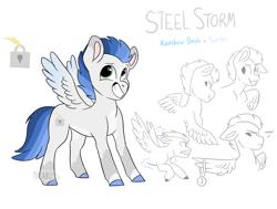 Size: 1996x1512 | Tagged: safe, artist:moccabliss, oc, oc:steel storm, pegasus, pony, male, offspring, parent:rainbow dash, parent:soarin', parents:soarindash, solo, teenager