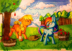 Size: 3185x2257   Tagged: safe, artist:theorderofalisikus, applejack, rainbow dash, earth pony, pegasus, pony, apple, apple tree, bandaged leg, basket, bucking, cloud, crosshatching, duo, duo female, eye clipping through hair, eyebrows, eyebrows visible through hair, female, food, grass, hat, high res, mare, marker drawing, open mouth, open smile, shading, sky, smiling, spread wings, standing, traditional art, tree, wings