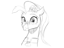 Size: 1061x803   Tagged: safe, artist:cadillacdynamite, princess skystar, hippogriff, my little pony: the movie, female, freckles, sketch, solo