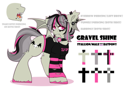 Size: 2700x2000   Tagged: safe, artist:etoz, oc, oc only, oc:gravel shine, bat pony, bat pony oc, bat wings, choker, clothes, collar, commission, ear piercing, earring, emo, eyebrow piercing, eyebrows, eyebrows visible through hair, fangs, jewelry, makeup, male, open mouth, piercing, reference sheet, shirt, simple background, snake bites, solo, stallion, t-shirt, text, white background, wings