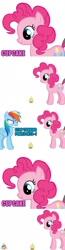 Size: 500x1913   Tagged: safe, pinkie pie, rainbow dash, earth pony, pegasus, pony, fanfic:cupcakes, asdfmovie, asdfmovie14, cupcake, female, food, simple background, white background