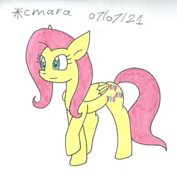 Size: 1092x1053 | Tagged: safe, artist:cmara, fluttershy, pegasus, pony, female, mare, raised hoof, simple background, solo, traditional art, white background
