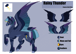 Size: 4961x3508 | Tagged: safe, artist:oneiria-fylakas, oc, oc:rainy thunder, pegasus, pony, colored wings, male, multicolored wings, offspring, parent:rainbow dash, parent:soarin', parents:soarindash, reference sheet, solo, stallion, tail feathers, wings