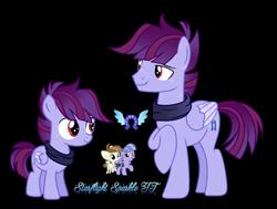 Size: 2200x1665 | Tagged: safe, artist:starflightsparkleyt, featherweight, wind sprint, oc, oc:winged high, pony, colt, male, offspring, parent:featherweight, parent:wind sprint, simple background, stallion, transparent background