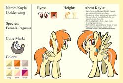 Size: 1920x1301   Tagged: safe, artist:alexdti, oc, oc:kayla goldenwing, pegasus, pony, female, mare, reference sheet, solo