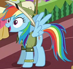 Size: 505x482 | Tagged: safe, screencap, rainbow dash, pegasus, pony, season 6, stranger than fan fiction, clothes, cosplay, costume, cropped, female, mare