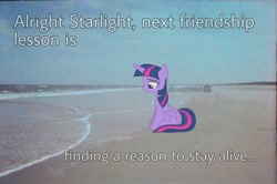 Size: 1087x720 | Tagged: artist needed, safe, edit, editor:notxweeb, twilight sparkle, alicorn, pony, beach, crying, irl, meme, photo, ponies in real life, sad smile, solo, twilight sparkle (alicorn)