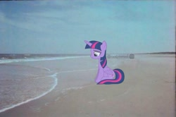 Size: 1087x720 | Tagged: artist needed, safe, alternate version, editor:notxweeb, twilight sparkle, alicorn, pony, beach, crying, irl, meme, photo, sad smile, sitting, twilight sparkle (alicorn), watermark
