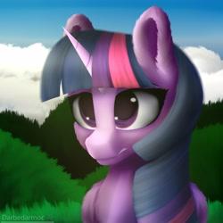 Size: 4096x4096   Tagged: safe, artist:darbedarmoc, twilight sparkle, alicorn, pony, unicorn, chest fluff, cloud, disgusted, ear fluff, grass, looking forward, solo, twilight sparkle (alicorn), two toned mane