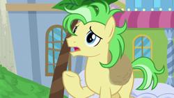 Size: 1920x1080 | Tagged: safe, screencap, saturn (character), earth pony, pony, friendship university, season 8, spoiler:s08, las pegasus resident, male, raised hoof, solo, stallion