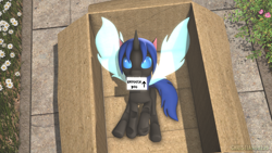 Size: 1920x1080   Tagged: safe, artist:christian69229, oc, oc only, oc:swift dawn, changeling, pony, 3d, blue changeling, blue eyes, box, cardboard box, changeling in a box, changeling oc, commission, cute, detailed background, fangs, flower, grass, letter, looking at you, male, ocbetes, pony in a box, sidewalk, solo, source filmmaker, stallion, wings, ych result