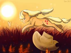 Size: 2080x1560 | Tagged: safe, artist:yuris, applejack, earth pony, pony, field, hat, running, solo, sun, sunset, wind