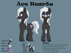 Size: 2400x1800   Tagged: safe, artist:rockhoppr3, oc, oc only, oc:ace hearts, earth pony, pony, reference sheet