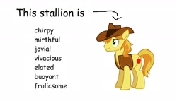 Size: 1920x1102 | Tagged: safe, braeburn, earth pony, pony, arrow, clothes, comic sans, cowboy hat, hat, jacket, list, male, simple background, solo, stallion, text