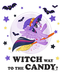 Size: 800x950 | Tagged: safe, twilight sparkle, alicorn, bat, pony, g4, official, broom, design, female, flying, flying broomstick, full moon, halloween, hat, holiday, mare, merchandise, moon, shirt design, simple background, stars, text, transparent background, twilight sparkle (alicorn), witch, witch hat