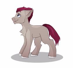 Size: 4800x4500 | Tagged: safe, artist:hotcurrykatsu, oc, earth pony, pony, male, simple background, white background