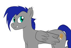 Size: 2039x1378 | Tagged: safe, artist:tranzmuteproductions, oc, oc only, pegasus, pony, blue mane, ear fluff, ear tufts, fangs, folded wings, male, pegasus oc, simple background, slit pupils, smiling, solo, stallion, teal eyes, white background, wings