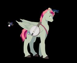 Size: 3300x2700 | Tagged: safe, artist:t3ssrina, banjo blue, pegasus, pony, banjo, musical instrument, solo