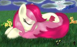 Size: 1280x781 | Tagged: safe, artist:smilodonkahn, apple fritter, applejack, princess luna, roseluck, alicorn, earth pony, pony, apple family member, female, grass, moon, night, sleeping, solo
