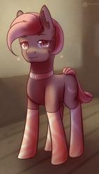 Size: 1080x1898   Tagged: safe, artist:aterhut, oc, oc only, earth pony, clothes, female, socks